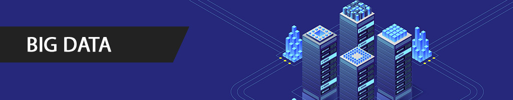 Big Data 2021